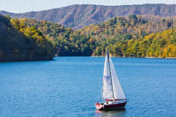 Fall Sail!