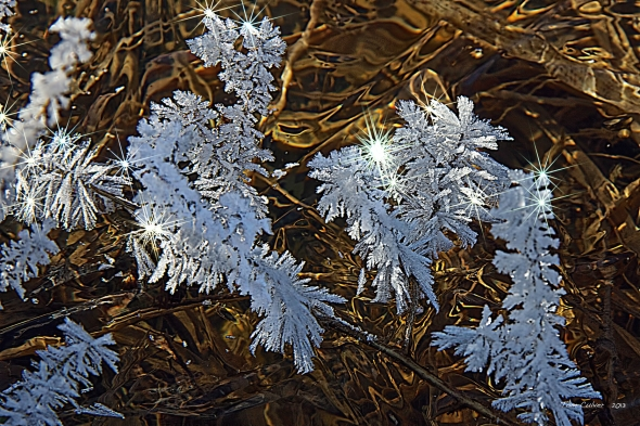 More Ice Crystals With Sparkle!
