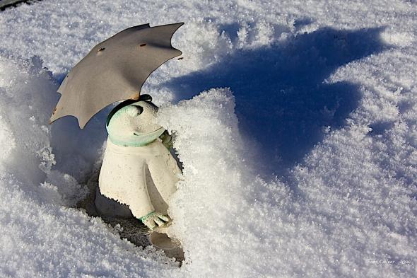 Froggy's Umbrella